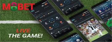 M8bet Live Games
